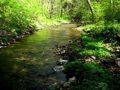 21977-creek3